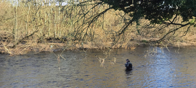 French nymphing on the Wharfe